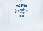 Big Fish 1983 Thon-bigfish-900X900-580x580