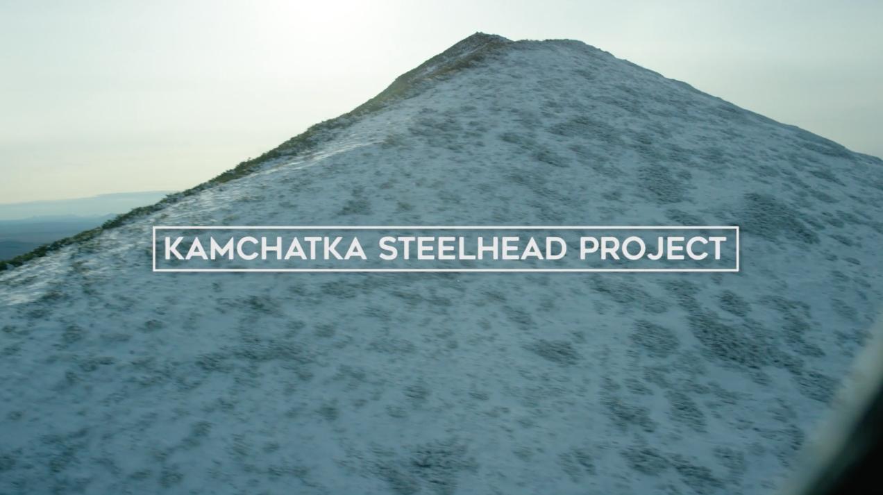 Kamchatka steelhead project