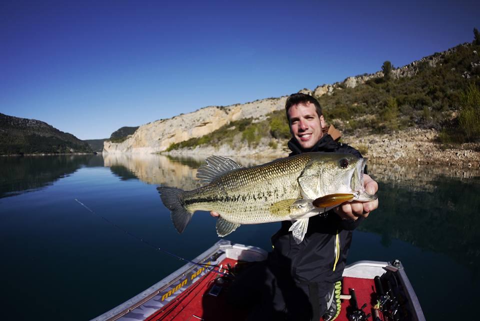 black-bass : 5 astuces pour le pêcher en été