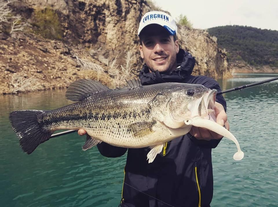 Pêche du black bass en été