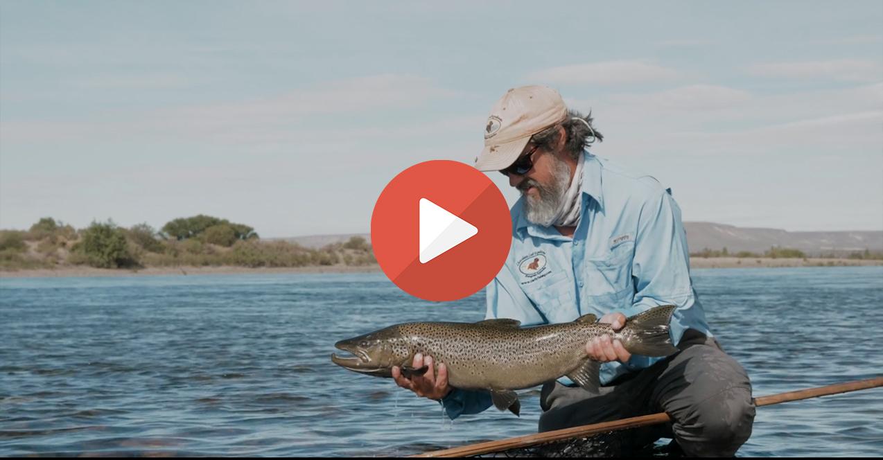 vidéos de pêche d'août
