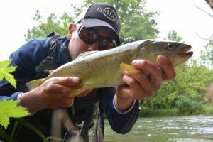 Pêche de la truite aux leurres en Haute-Marne