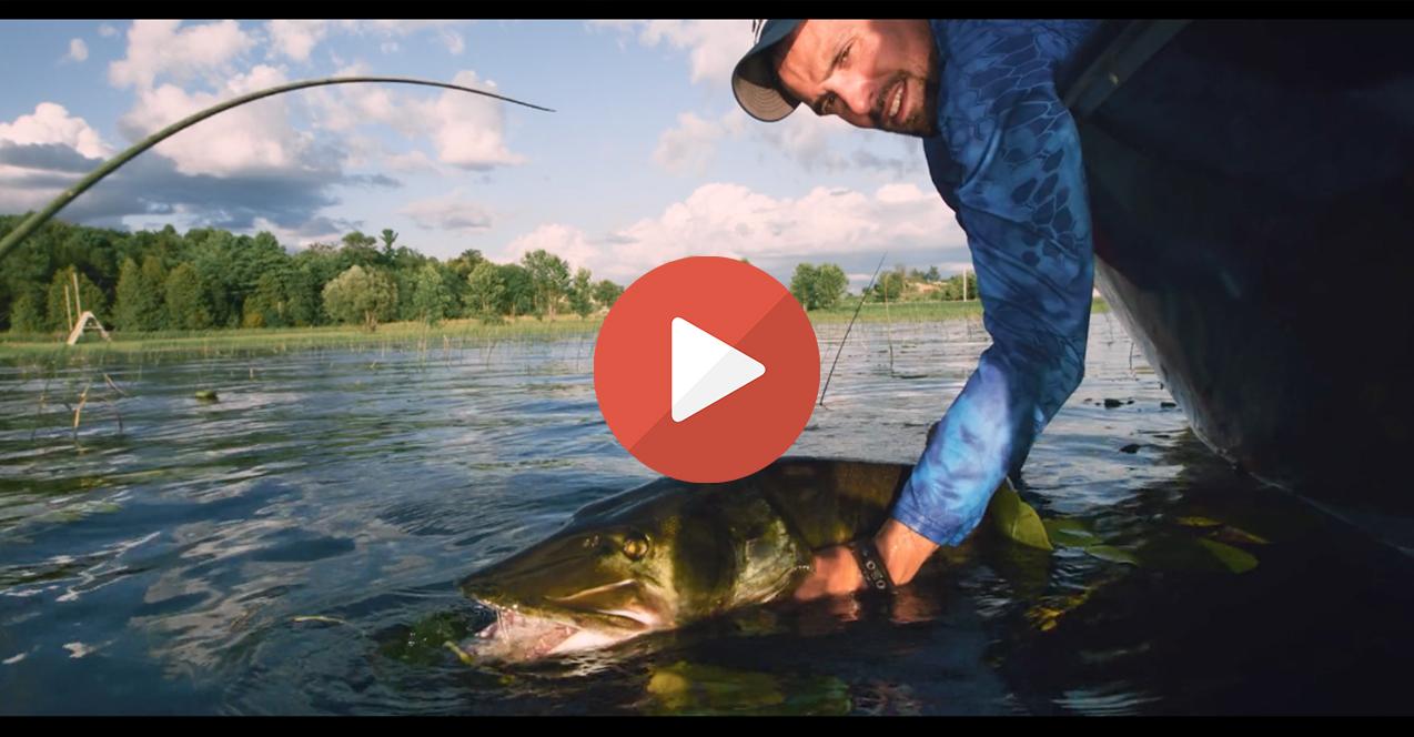 Vidéo de pêche : La sélection des plus belles vidéos du mois d'Octobre