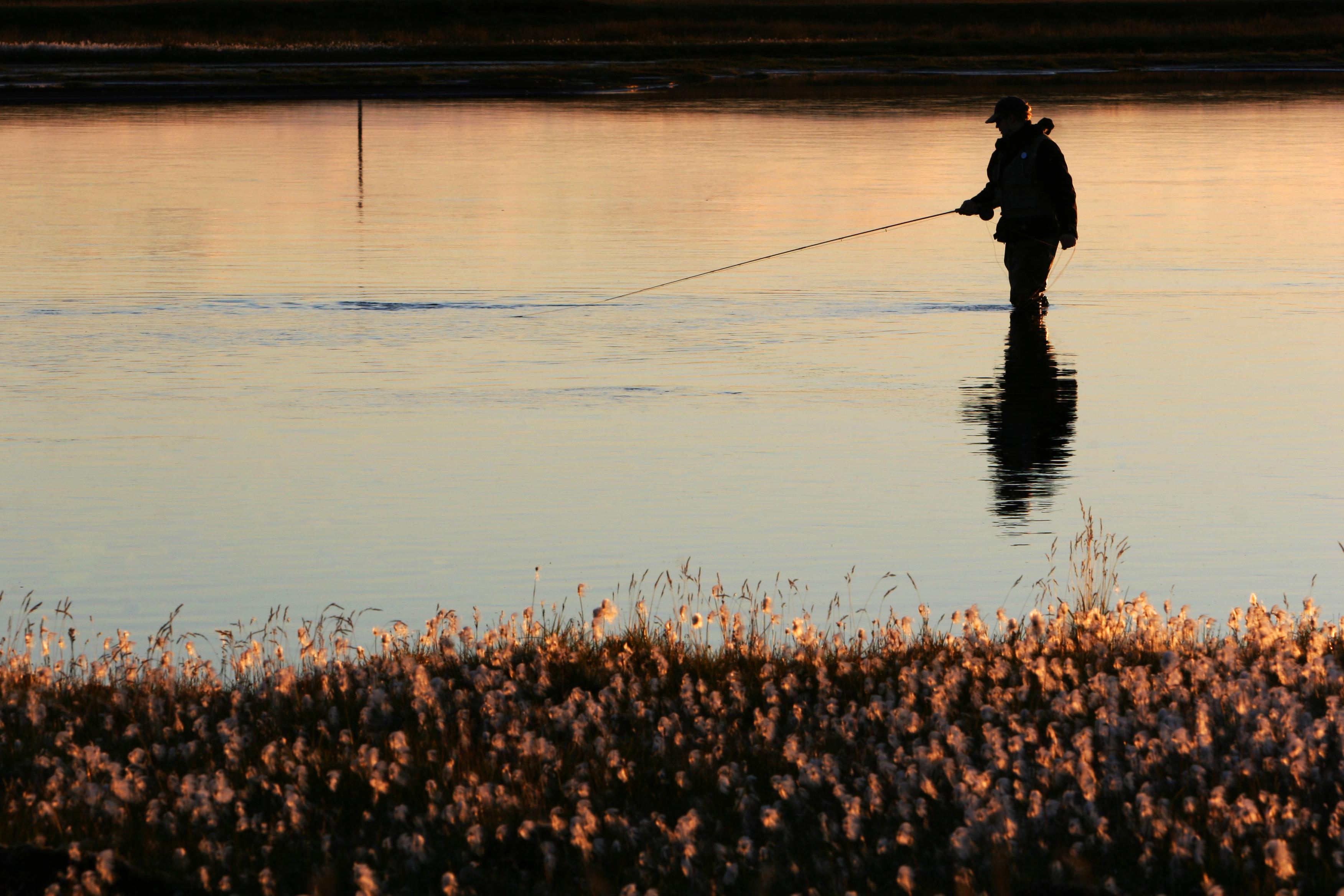 Livre de pêche : notre sélection des meilleurs livres dédiés à la pêche