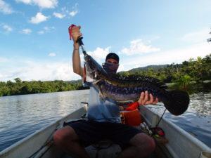Giant Snakehead: la puissance à l'état brut
