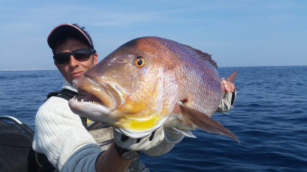 Fabien Harbers guide de pêche