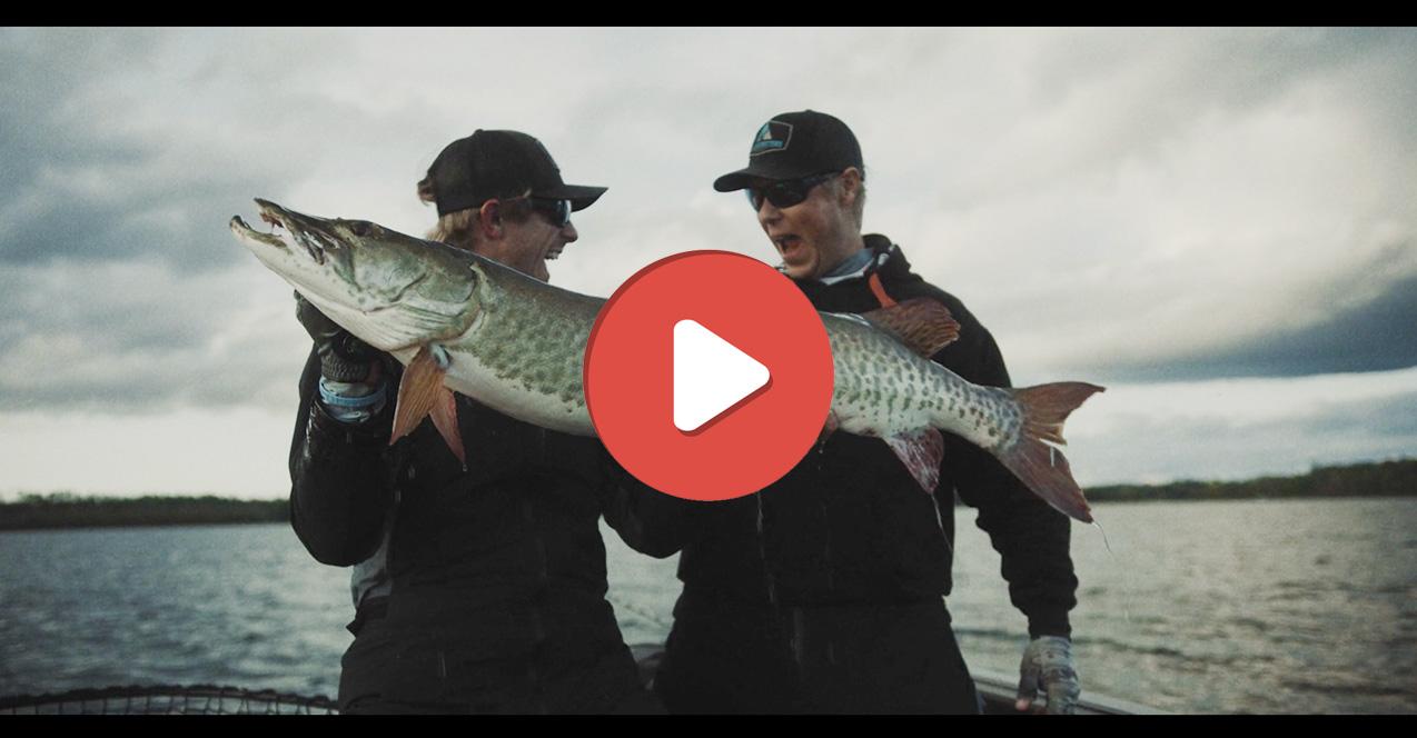 vidéo-de-pêche-novembre
