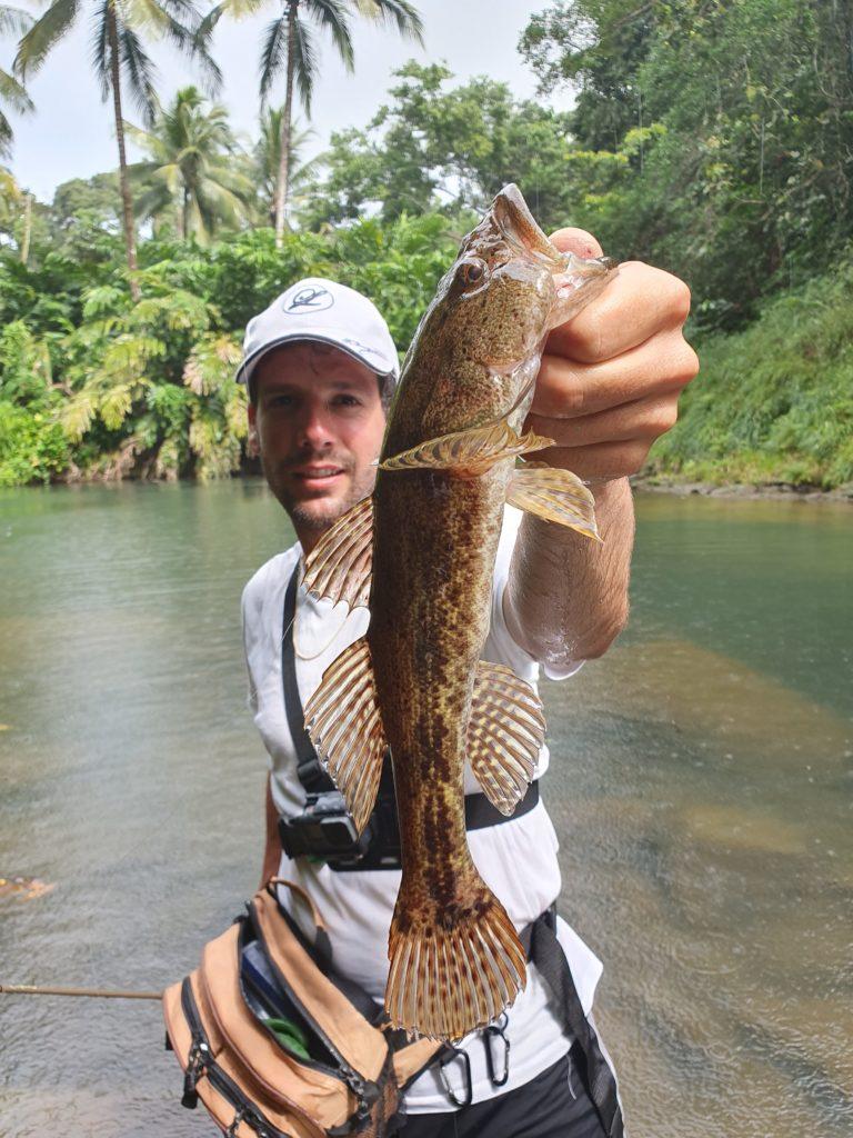 pêche en guadeloupe dormeur
