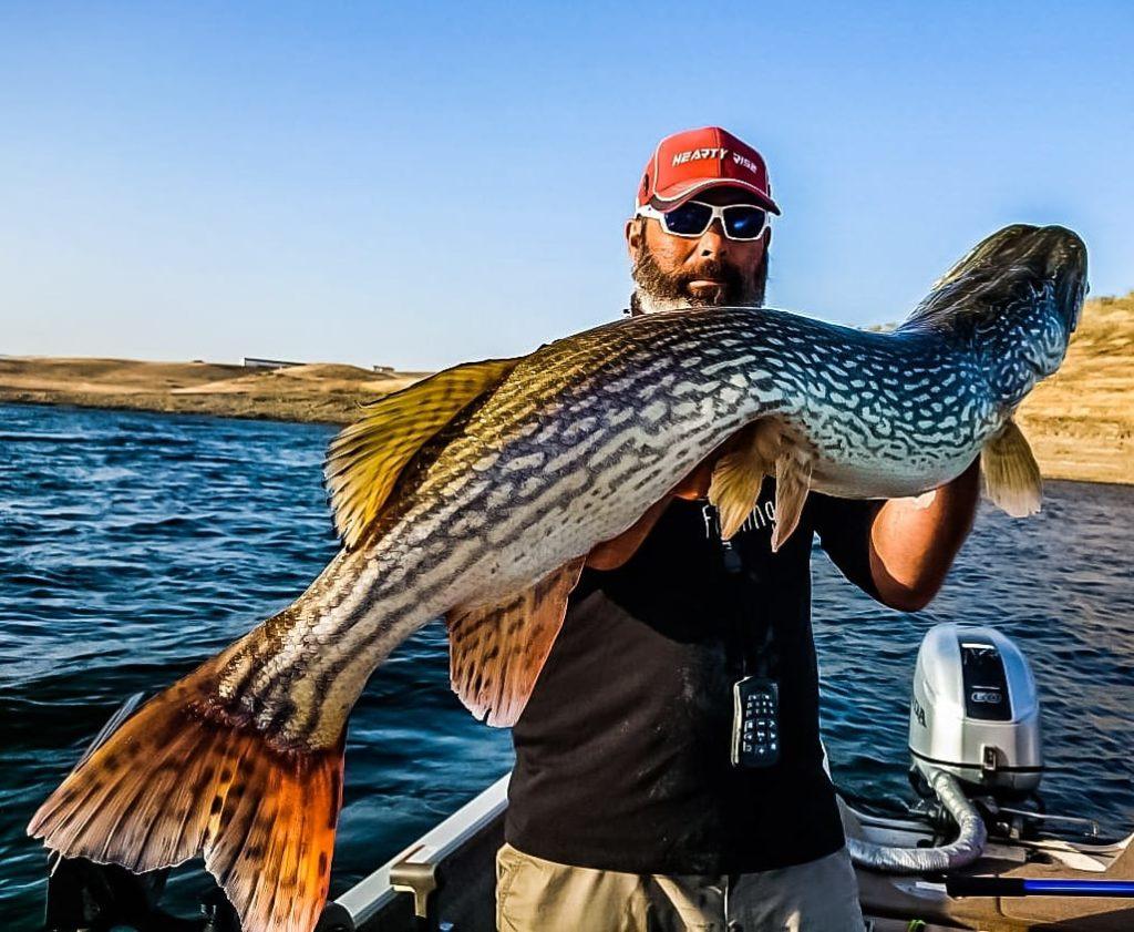 Cécrick Plasseau guide de pêche brochet