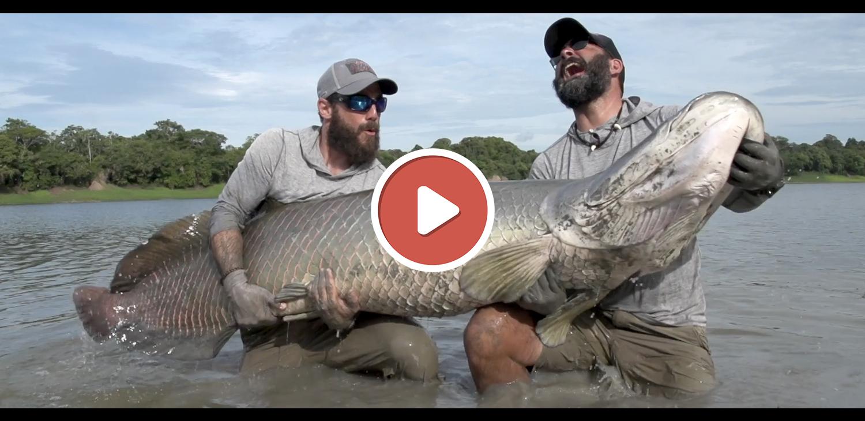 Vidéo de pêche avril 2020